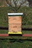 HOME da abelha imagem de stock