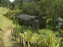 HOME da borboleta Imagem de Stock
