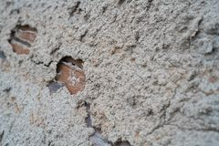 Home damage wood by termite.  stock photo