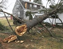 Home damaged by fallen tree Stock Photo