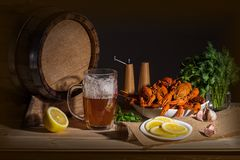 Home decor, beer still life in dark colors. royalty free stock images