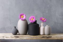 Various vases with flowers on wooden shelf Stock Images