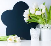 White tulips and chalk board Stock Photography