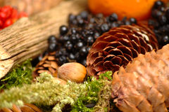 Home decoration - autumn theme Royalty Free Stock Images
