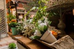 Decorative flower Stock Images