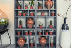 Home decoration with plants and pots Stock Images