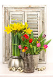 Home decoration with spring flowers, easter eggs Stock Photos