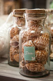 Home decorations jars with small sea shells. A home decorations articles, two jars filled with small sea shells with deco label Stock Images