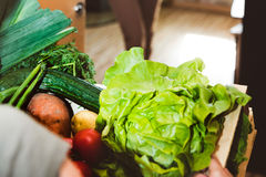 Home delivery of fresh vegetables, grocery box Royalty Free Stock Image