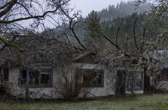 Home Destroyed by Fallen Tree in Wolf Creek, Oregon stock images