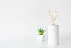 Home diffuser and potted plant Royalty Free Stock Photography