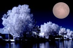 HOME do lago desert do Moonrise Imagens de Stock