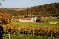 HOME e vinhedo em Aquitane France imagens de stock