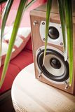 Home entertainment speaker. Placed under a plant Stock Photo