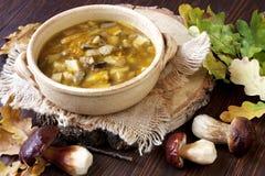 A HOME fêz a sopa de cogumelo Foto de Stock
