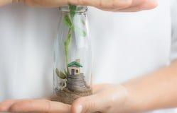 home försäkring Kvinnliga händer som sparar det lilla huset i den glass kruset med mynt och växter som växer på en svart bakgrund royaltyfria bilder