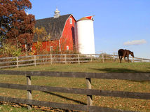 Home on the farm. A horse wanders in the pasture next to a red wooden barn with an unpainted fence in the foreground.  Fall leaves scatter in the grass Royalty Free Stock Images