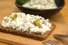 A HOME fêz a salada de arenques Fotografia de Stock Royalty Free