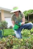 Home garden activities stock image