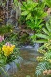 Home garden backyard waterfall green nature zone. Decoration vertical shot stock photos