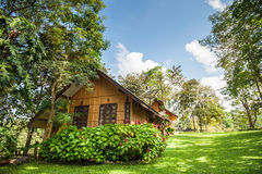 Home, in the garden. Is covered with trees Stock Photography