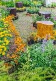 In home garden. Stock Photo