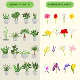 Home and garden flowers color flat icons set. For wen and mobile design Stock Photography