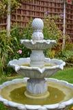 Home garden fountain. Summer time home garden fountain Stock Image
