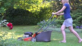 Home garden grass cutting woman mowing with lawn mower near red rose bush plant in yard. 4K