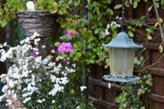 Home garden lantern. Summer time home garden lantern with a shallow depth of field Stock Photography