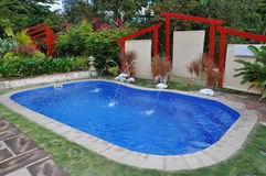 Home garden with swimming pool Stock Image
