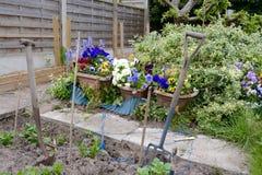 Home garden Stock Photography