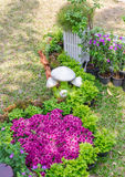 In home garden. Royalty Free Stock Images