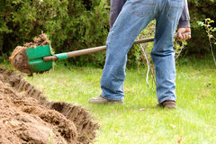 Home gardening in the spring. A man digging in the garden soil Royalty Free Stock Photography