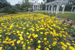 Home and gardens of the Boone Hall Plantation Royalty Free Stock Photos