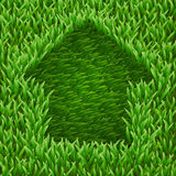 Home on green grass. Stock Images