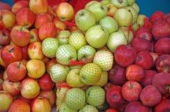 Home-grown apples, fair, Zagreb, Croatia, Europe Stock Photo