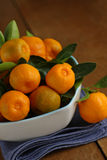Home grown calamondins Royalty Free Stock Photography