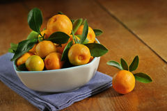 Home grown calamondins Royalty Free Stock Images