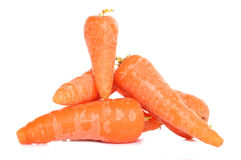 Home grown carrots Royalty Free Stock Images