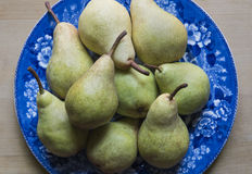 Home Grown Pears on a Blue and White China Plate. Green Pears just picked and placed on an antique blue and white china plate Royalty Free Stock Photography