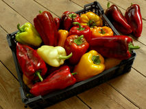Home grown peppers Royalty Free Stock Photography