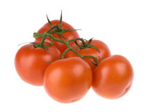 Home grown red tomatoes Royalty Free Stock Photography