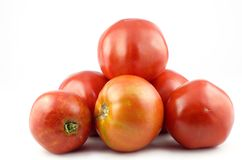 Home Grown Tomatoes Royalty Free Stock Images