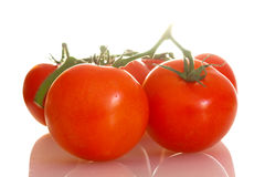Home grown tomatoes on the vine Royalty Free Stock Photography