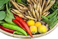 Home grown vegetables for thai spicy food. Basket of home grown vegetables for thai spicy food Stock Images