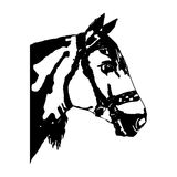 Home horse (head, abstraction). Royalty Free Stock Images