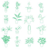 Home houseplants and flowers in pot outline icons eps10 Stock Image