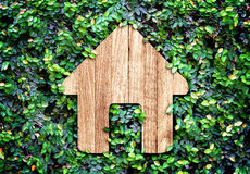 Home icon on green leaves wall,Eco home system Royalty Free Stock Images
