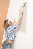 Home improvement: Smiling woman with paint brush Royalty Free Stock Photography